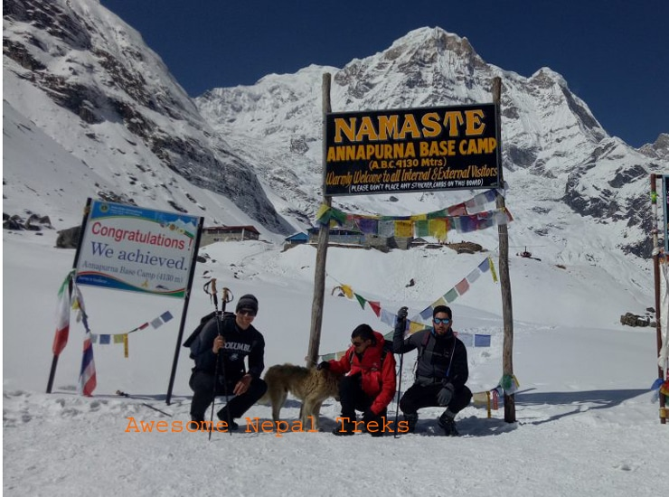 Annapurna Sanctuary trek,Trekking to Annapurna base camp